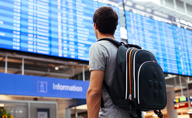 Student blickt auf Anzeigetafel am Flughafen